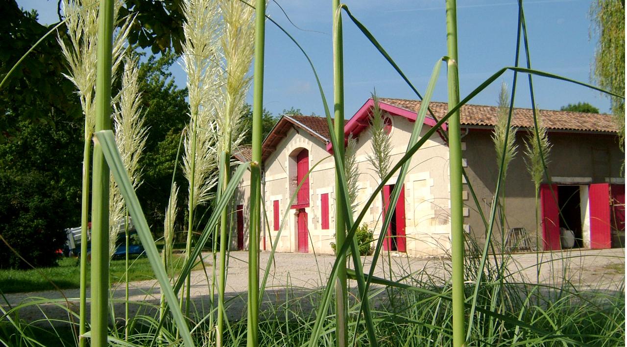 Château Duplessis - Vue Extèrieure 2