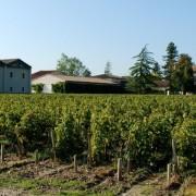 Chateau_Dutruch_Grand_Poujeaux-15