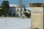 Château Anthonic - Propriété_1