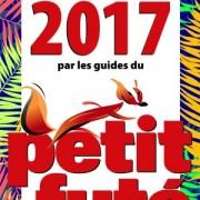Petit Futé 2017